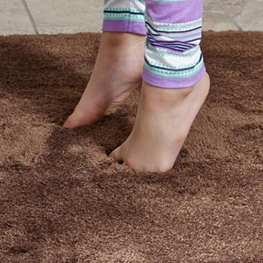 STAINMASTER® Area Rugs in Geneseo, NY